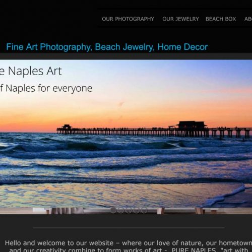 Image of a screen capture of the home page of the website Pure Naples Art